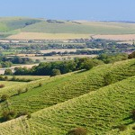 south-downs-way-top-News