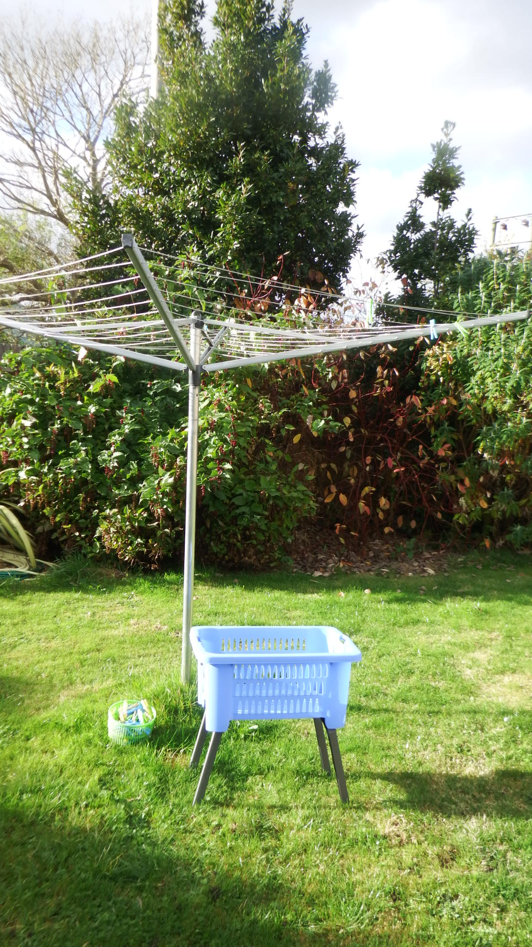 washing-basket-withlegs