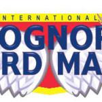 bognor-birdman-logo-1