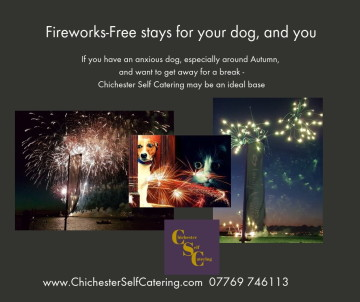 Fireworks Free stays for your dog, and you