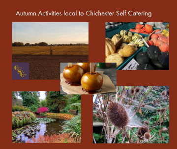 Autumn Activities local to Chichester